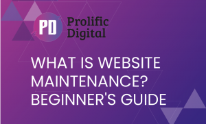 What Is Website Maintenance Beginner's Guide for 2021